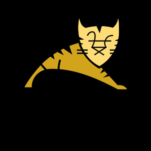 Apache Tomcat Technology